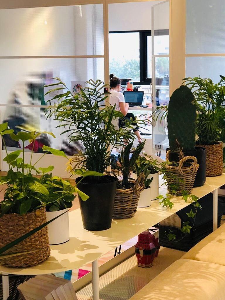 HOUSE | משרדים בגדלים שונים מאדם עד 4 אנשים | תמונה #1 - 1