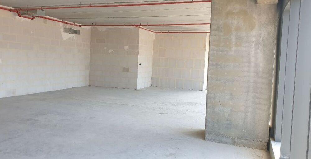 משרד בבניין מגדל הכשרת הישוב  | קומה: 6 | שטח 186 תמונה | מ׳׳ר #1 - 1